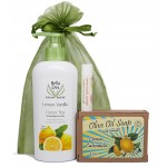 Gift Bag - Lotion, Soap & Lip Balm