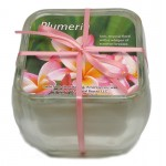 Glass Soy Candle - Plumeria